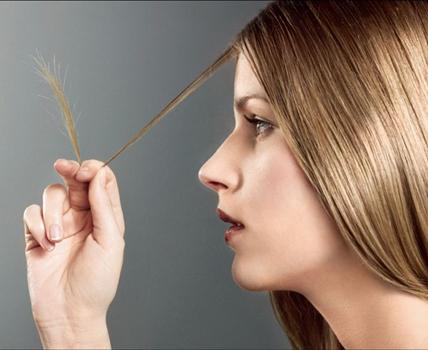 Почему волосы секутся? фото