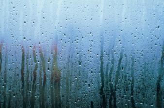 Почему-потеют-пластиковые-окна