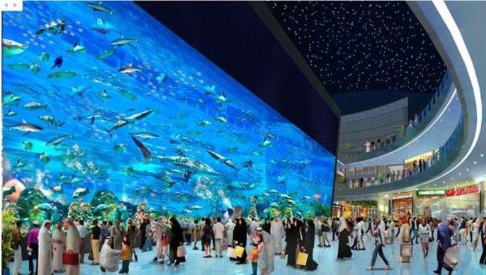 Почему в ОАЭ все богатые? фото