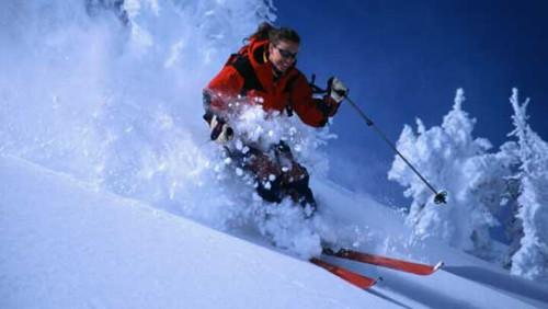 Как выбрать горные лыжи? фото