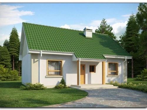 Как построить дом быстро и качественно? фото
