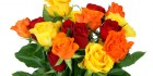 20131214-20131214-opt-flowers-zakaz1-500x333