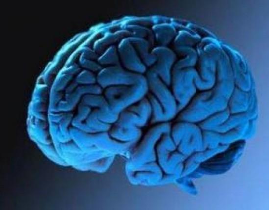 Почему мозг не работает на полную мощность? фото