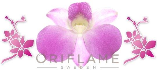 Как заказать косметику орифлейм через интернет? фото