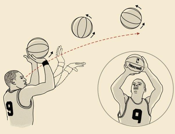 Как научится попадать в кольцо в баскетболе? фото