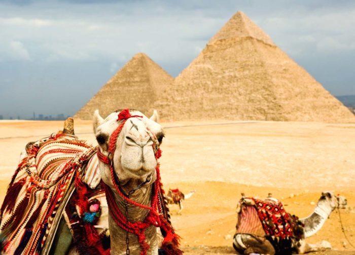 Как правильно отдыхать в Египте? фото