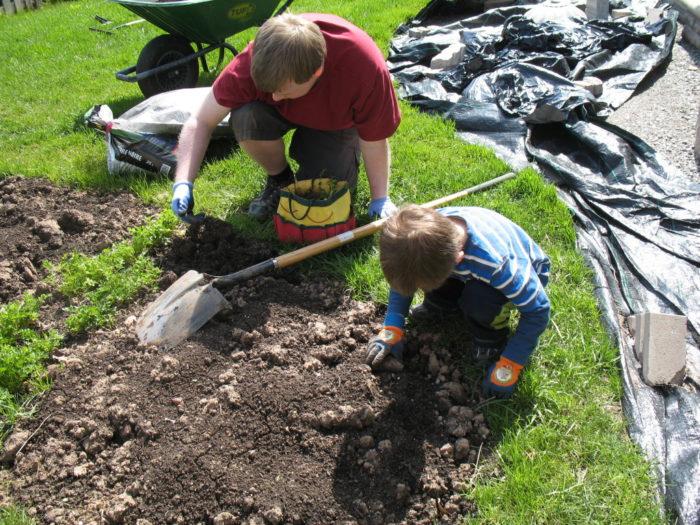 Как защитить руки во время огородных работ? фото