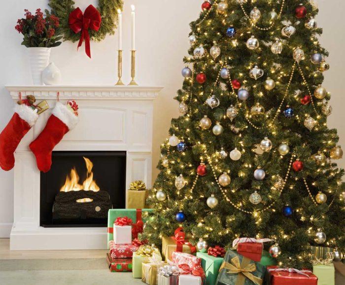Как купить новогоднюю ель и не ошибиться в выборе качественного товара? фото