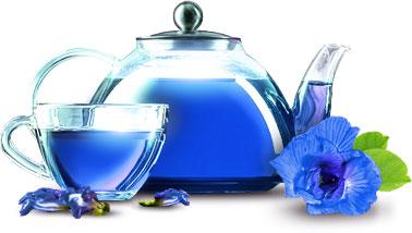 """Чем полезен пурпурный чай """"Чанг Шу""""? фото"""
