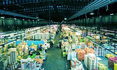 Как начать бизнес по оптовой торговле? фото