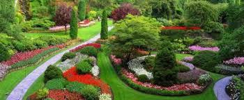 Как озеленить свой двор? - фото