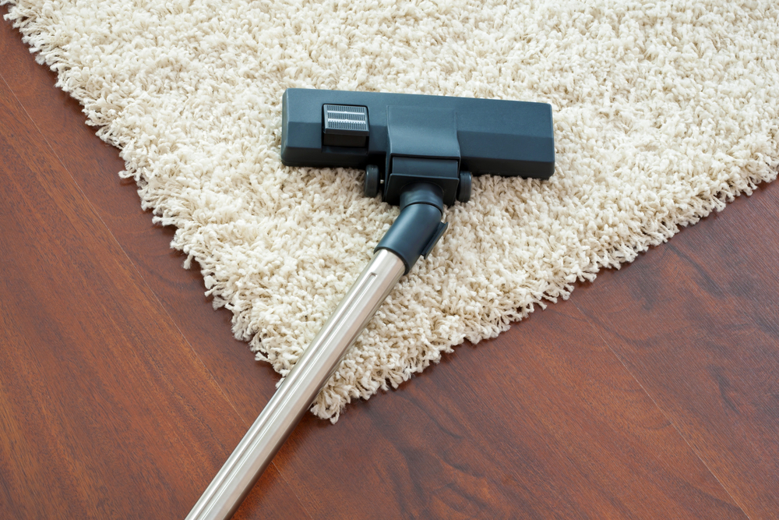 Как чистить ковер с длинным ворсом от волос? фото