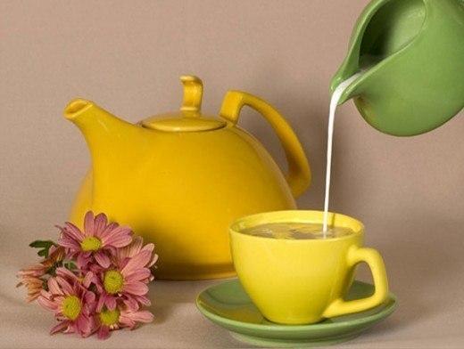 Как правильно пить зеленый чай с молоком для похудения? фото