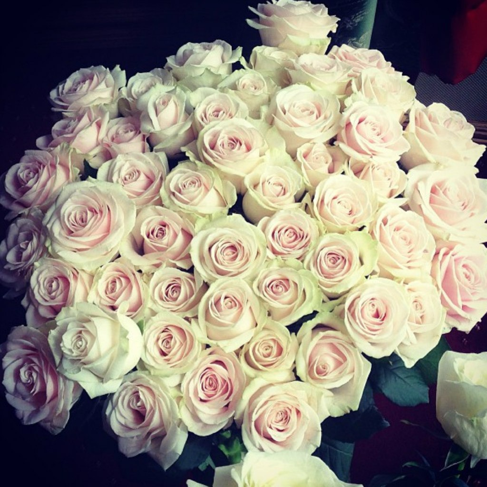 Какие цветы подарить девушке рыбы? фото