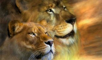 Лев-женщина-Лев-мужчина-совместимость