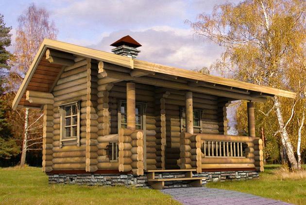 Из чего строить дом или баню? фото