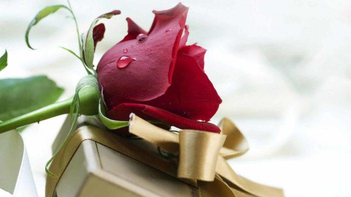 Какие подарки любят женщины Близнецы? фото