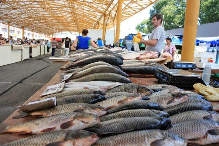 К чему снится покупка рыбы? фото