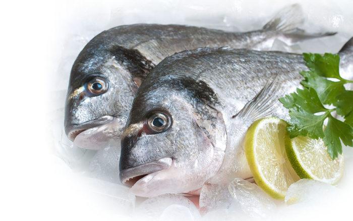 К чему снится замороженная рыба женщине? фото