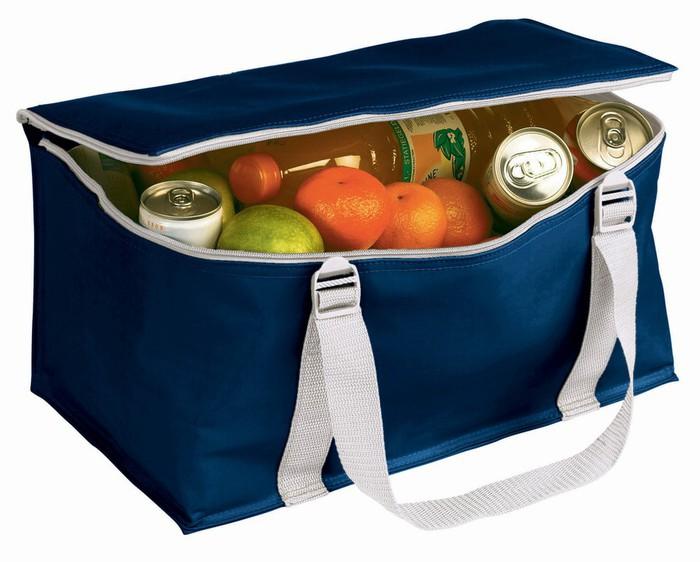 Как выбрать сумку холодильник? фото