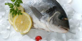 zamorojennaya-ryba-1