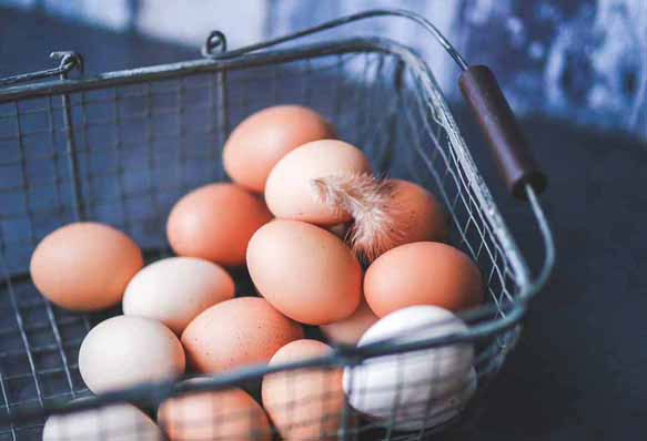 К чему снится покупать яйца? фото