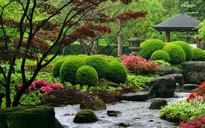 К чему снится зеленый сад? фото