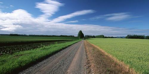 К чему снится длинная дорога? - фото