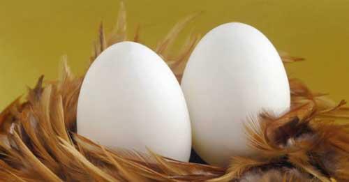 К чему снится белое яйцо? фото