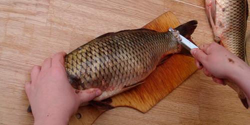 К чему снится чистить рыбу женщине? фото