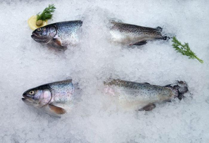 К чему снится мороженная рыба? фото