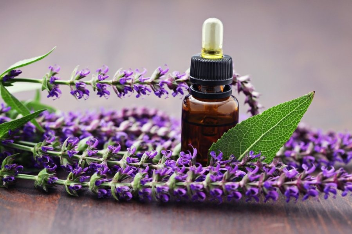 Почему полезна ароматерапия? - фото