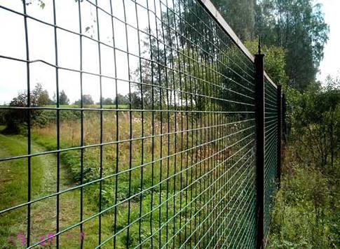 Как сделать забор из сварной сетки своими руками? - фото