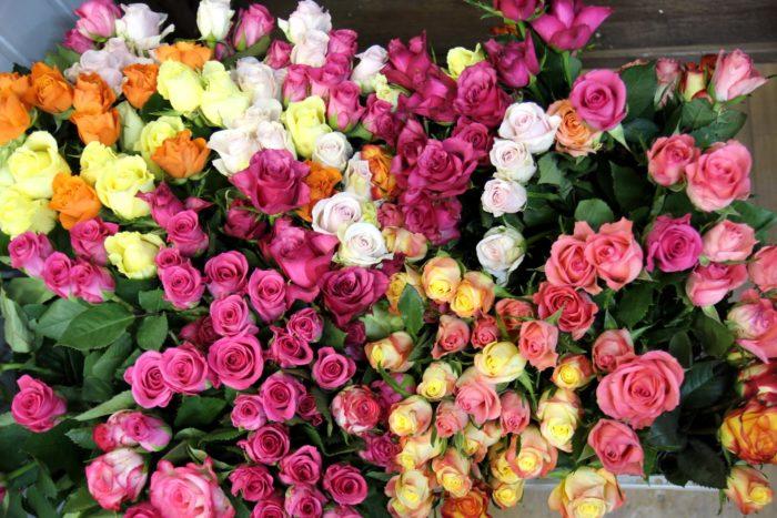 Как выбрать цветы в подарок? фото