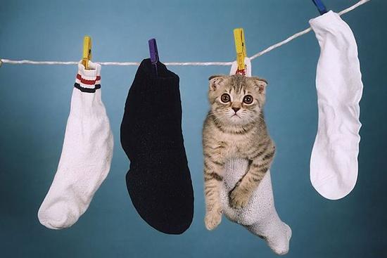 Можно ли стирать носки в стиральной машине? фото