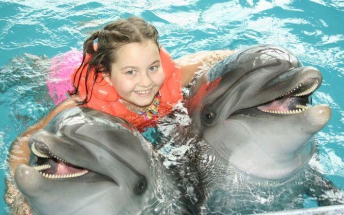 Почему полезно плавать с дельфинами? фото