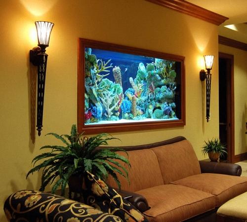 Как сделать сухой аквариум своими руками? фото