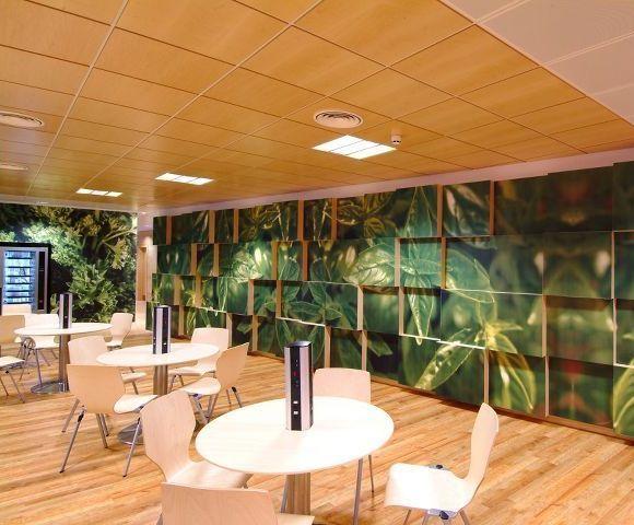Почему деревянные подвесные потолки Armstrong   лучшее решение? фото