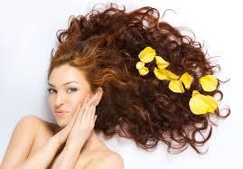 Как ухаживать за жирными волосами? фото