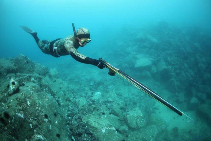 Как выбрать ружье для подводной охоты? фото