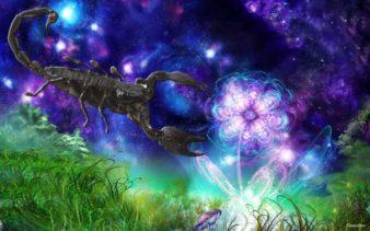 Scorpion2-geocult-3f