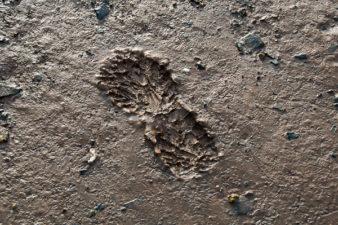 A footprint in the mud in the tidal plain at East Hants, Nova Sc